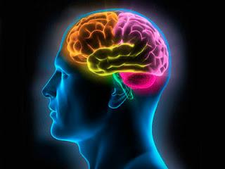 Kanker Otak, Penyebab, dan Gejalanya | Simemet